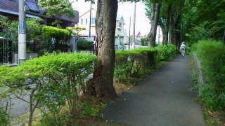 ふれあいの丘3.jpg